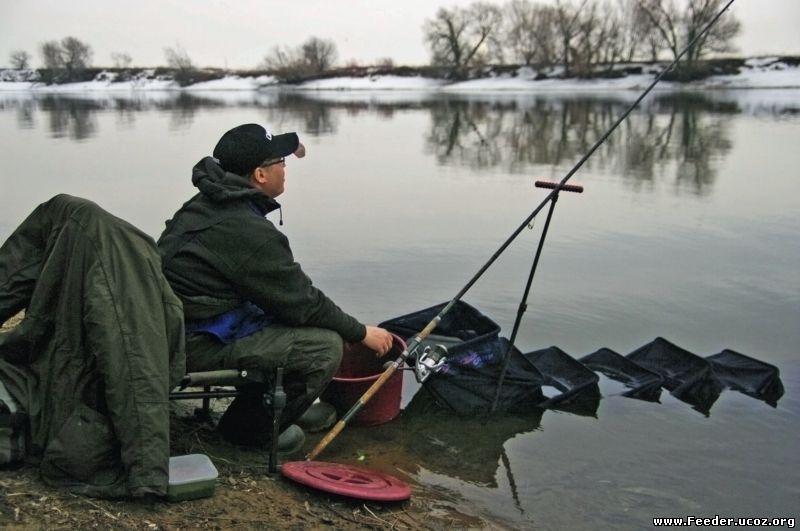любительская рыбалка фидером